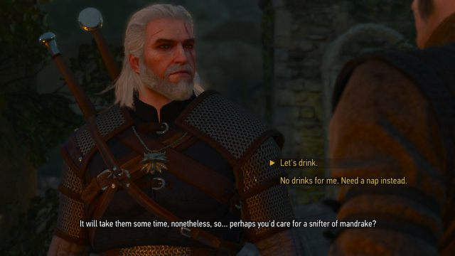 The Witcher 3: The Wild Hunt Switch Review – The Art of Compromise - picture #3