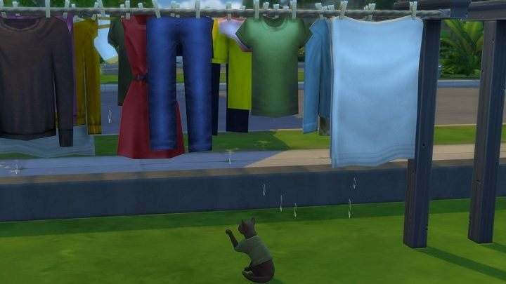 The add-on isn't awe-inspiring in terms of content, but cats seem to be having fun. Some fun, at least. - Spending $10 for Laundry in The Sims 4 is My Worst Decision This Year - dokument - 2020-03-09
