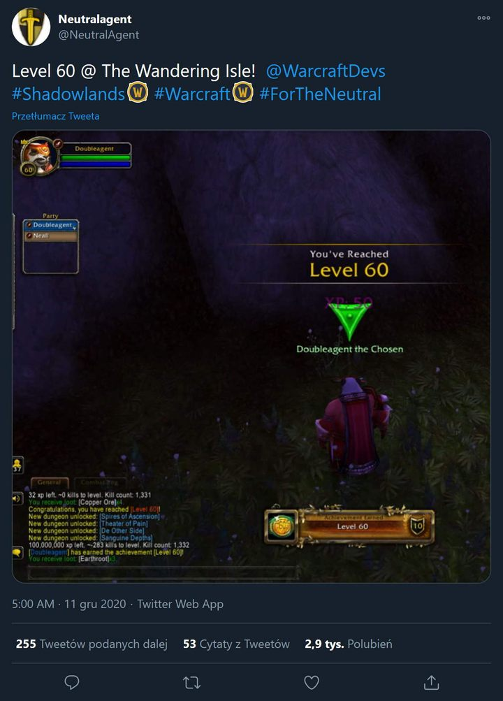 Pacifist Panda Reaches Max Level in Shadowlands in Peace - picture #1