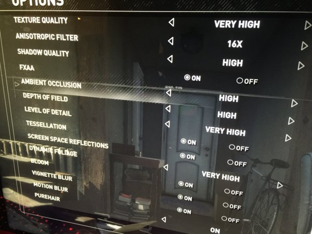 Rise of the Tomb Raider PC graphics settings revealed; the game uses AMD's PureHair technology - picture #1